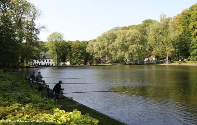 pêche,poisson,étangs,coup de coeur