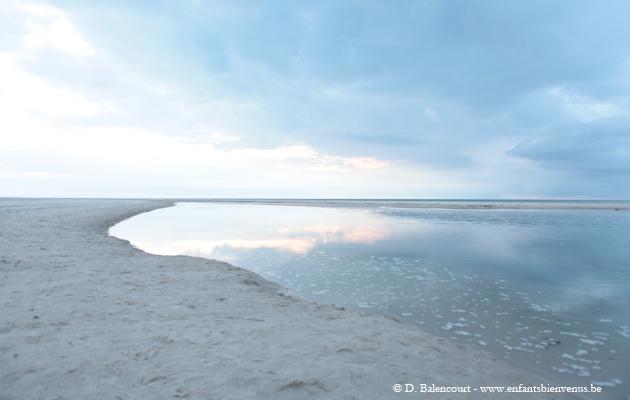 skagen,nature,mer,plage,coup de coeur,gratuit