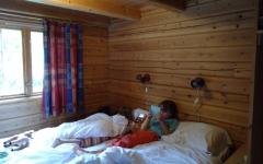 piscine,nature,cabane, hytte, glamping