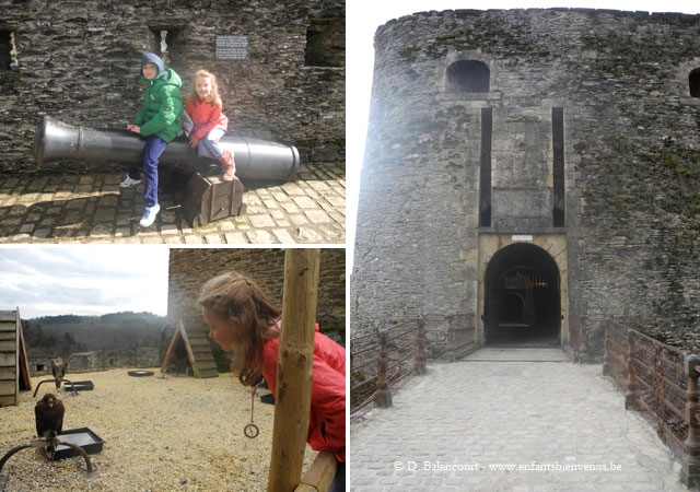 bouillon,château,château fort,fauconnerie,faucon,rapaces,spectacle,ardenne,semois