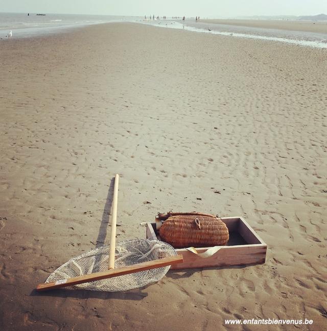 mer, plage, hotel, location, flat, vacances, bray-dunes, côte opale, jardin, terrasse, pêche
